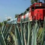 Boletos Tequila Express