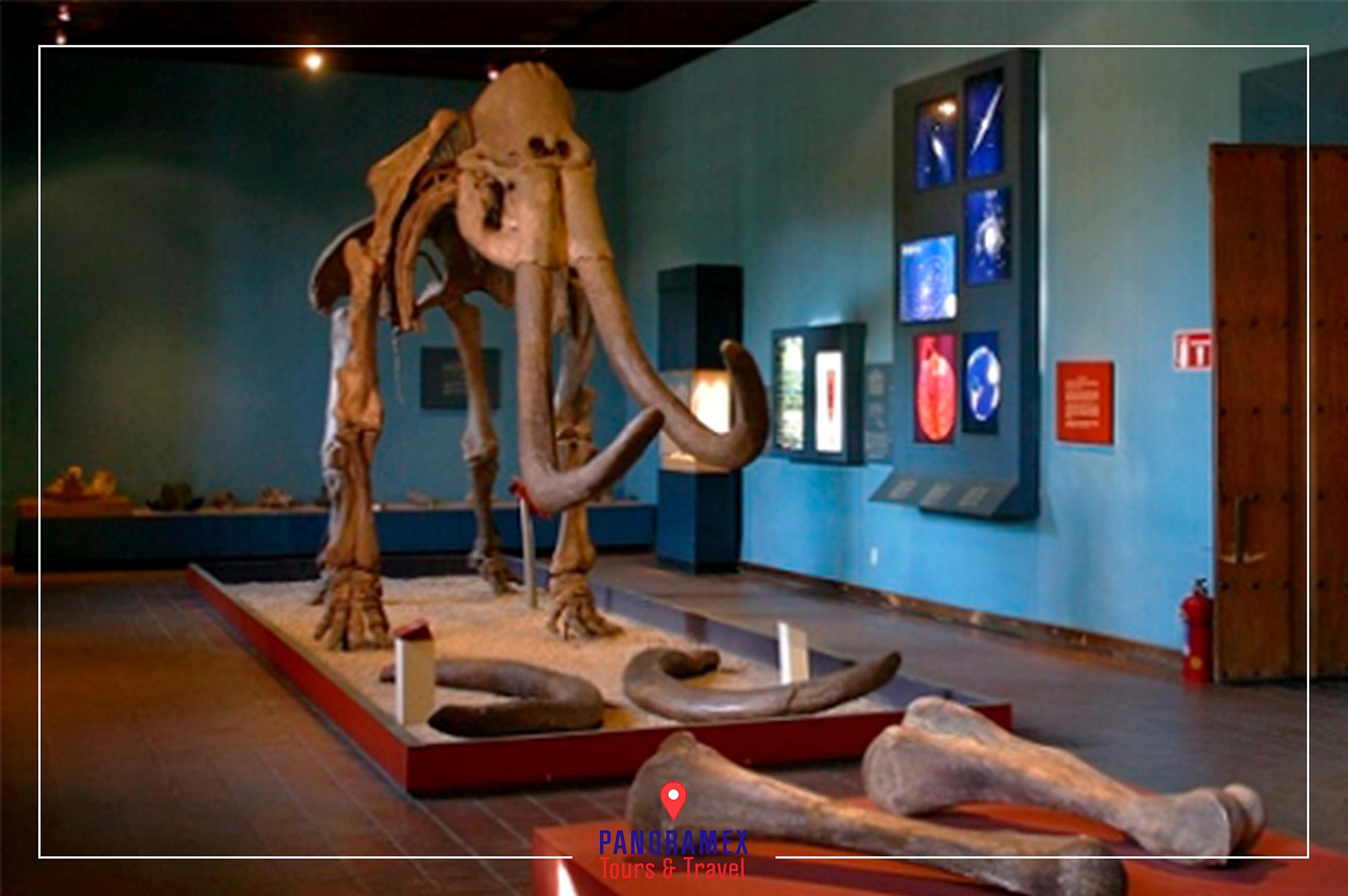 Museos Guadalajara Museo Regional de Guadalajara
