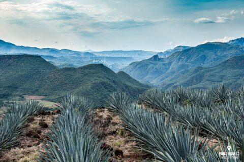 tequila-pueblo-mágico-jalisco