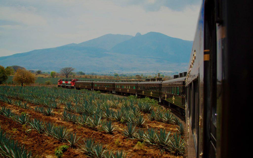 tren-jose-cuervo-tequila-express2